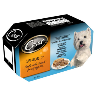 Cesar Trays Recipes Senior Dog Food