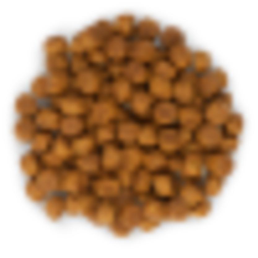 Hills Science Plan Medium Breed Puppy Chicken Dry Dog Food