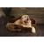 Scruffs Cub Bear Dog Bed