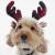 Rosewood Tartan Christmas Reindeer Antlers for Dogs