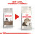 Royal Canin Ageing 12+ Dry Adult Senior Cat Food