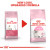Royal Canin Kitten Dry Cat Food