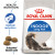 Royal Canin Indoor Long Hair Dry Adult Cat Food