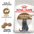 Royal Canin Ageing Sterilised 12+ Dry Adult Senior Cat Food