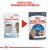 Royal Canin Ultra Light Care in Jelly Adult Wet Cat Food