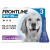 Frontline Flea Spot On Dog
