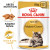 Royal Canin Maine Coon in Gravy Adult Wet Cat Food