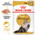 Royal Canin Persian in Loaf Adult Wet Cat Food Pouches