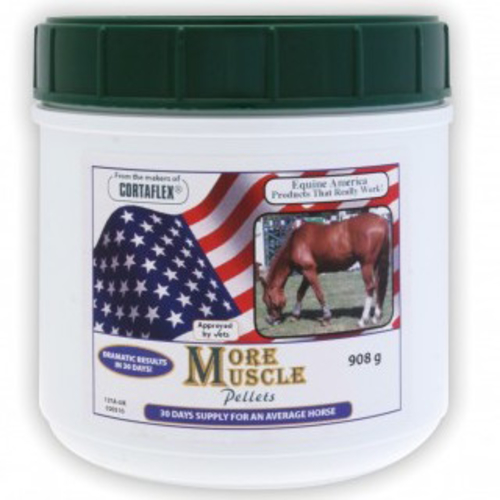 Equine America More Muscle