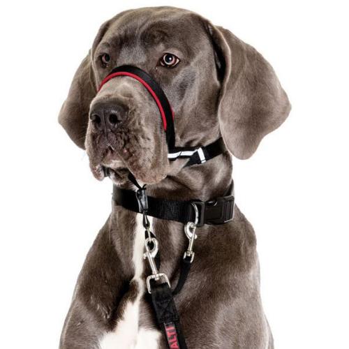 Halti Optifit Dog Headcollar