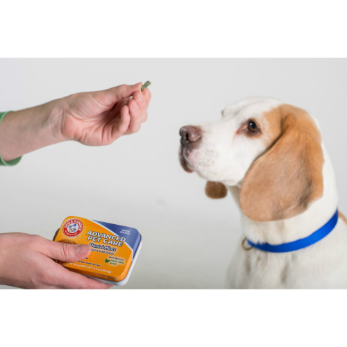 Arm & Hammer Tartar Control Dental Mints Beef