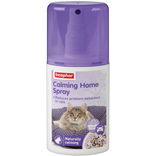 do male cats spray your house