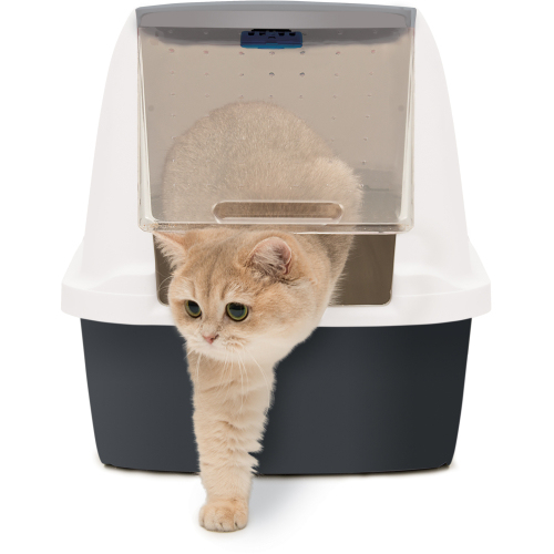 Catit Magic Blue Air Purifier
