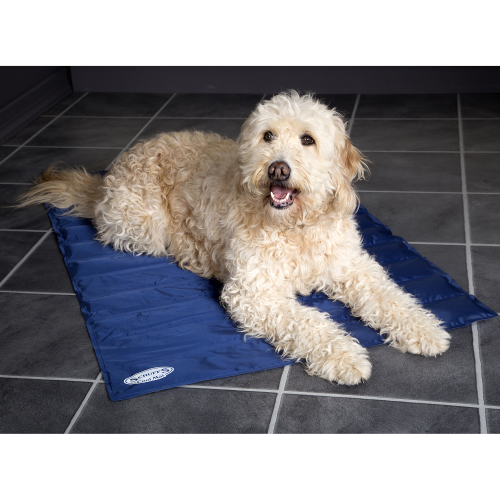 Scruffs Self Cooling Mat Dog Bed From 163 19 95