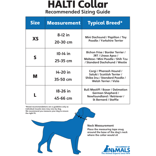Halti Dog Collar Black