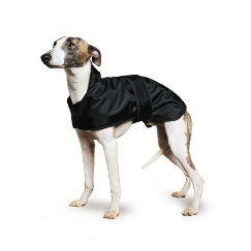 Ancol Muddy Paws Whippet Black Dog Coat