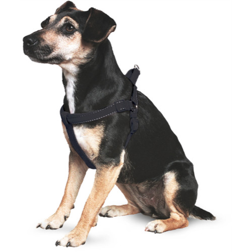Ancol Nylon Padded Dog Harness Black