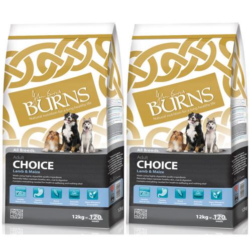 Burns Adult Lamb & Maize