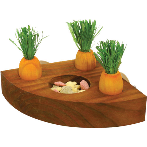 Carrot Toy n Treat Holder