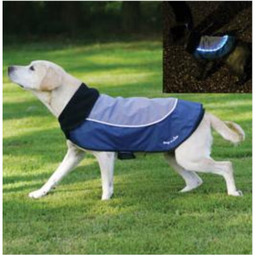 Rosewood Night-Bright LED Dog Jacket