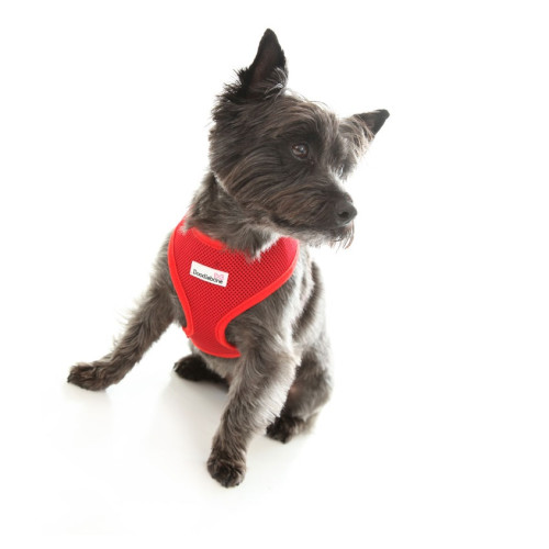 Doodlebone Mesh Dog Harness in Red