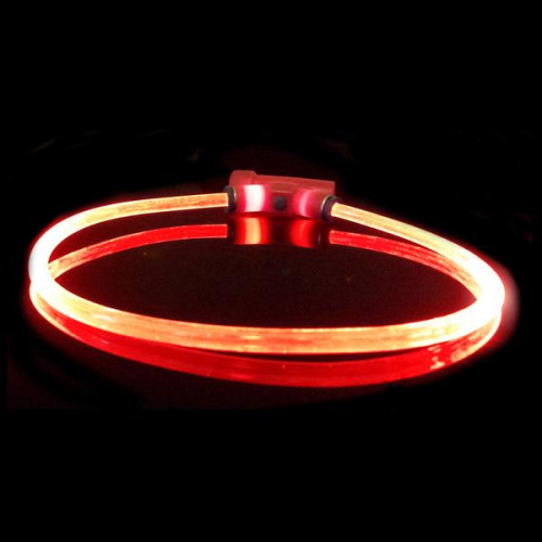 Red Dingo Lumitube Light Up Dog Collar Red Small