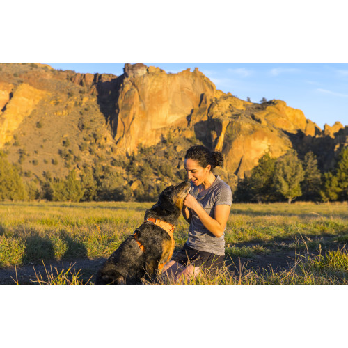 Ruffwear Front Range Dog Harness Wild Berry