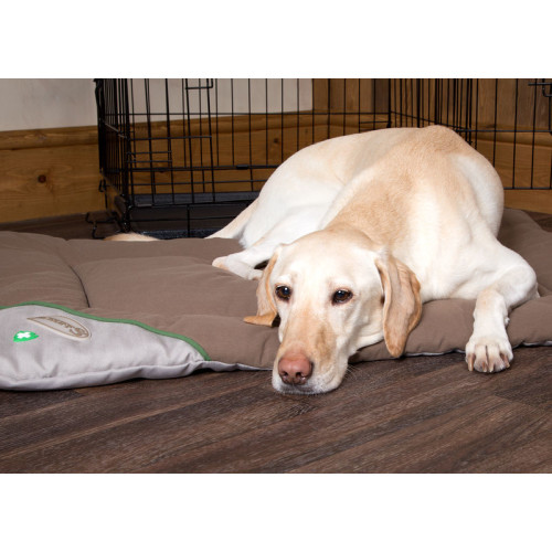 Scruffs Insect Shield Dog Crate Mat