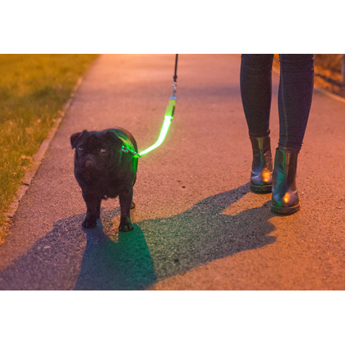 Ancol Hi Vis Flashing Lead Attachment Safety Light