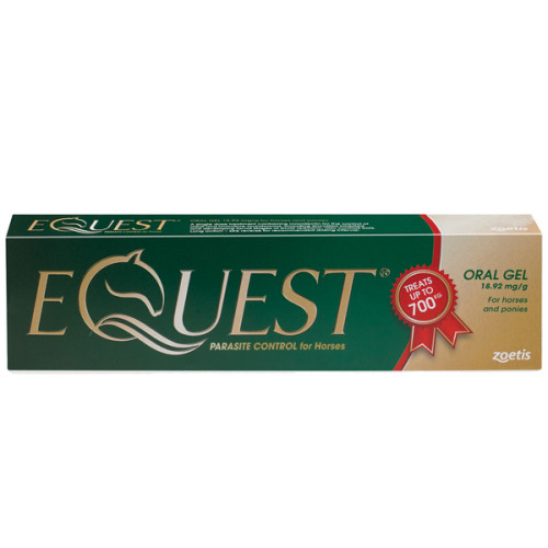 Equest Oral Gel Horse Wormer Single Syringe