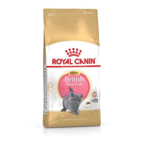 Royal Canin Breed Nutrition British Shorthair Kitten Food