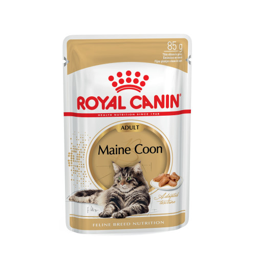 Royal Canin Maine Coon in Gravy Adult Cat Food