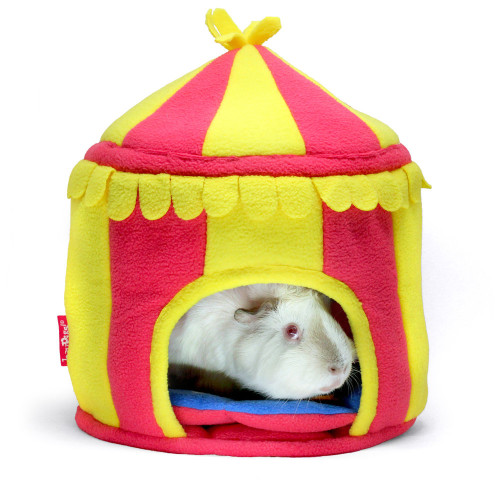 Haypigs Circus Hidey Hut for Small Animals