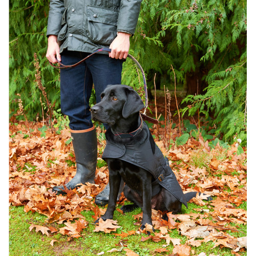 Barbour Quilted Dog Coat in Black