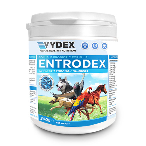 Entrodex Probiotic & Vitamin Supplements