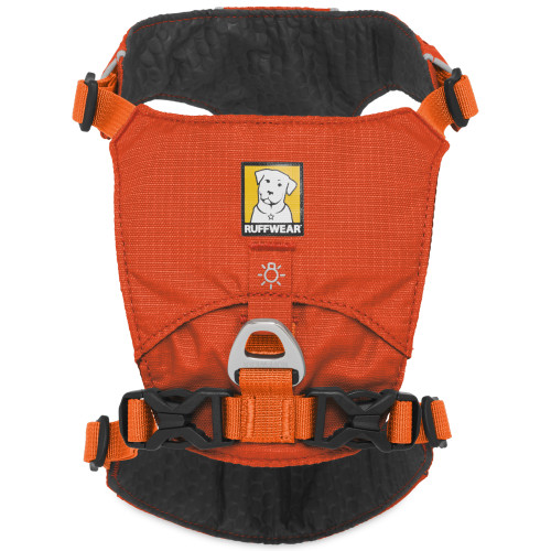 Ruffwear Hi & Light Dog Harness Orange