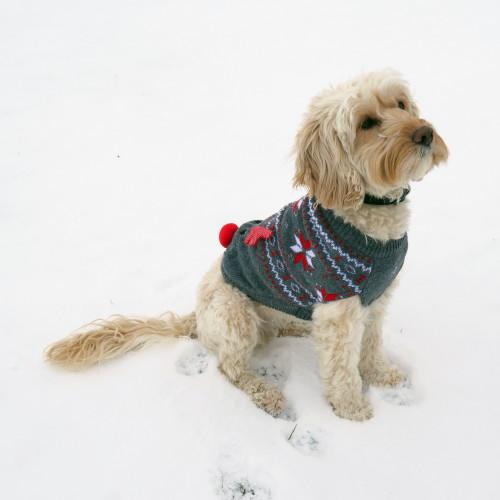 Rosewood Cupid Light up Dog Christmas Jumper