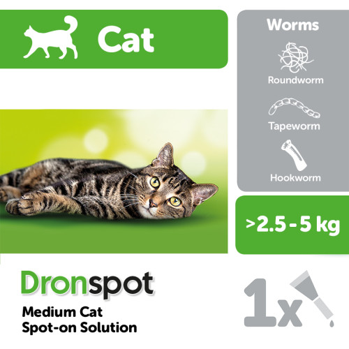 Dronspot Cat Worming Treatment