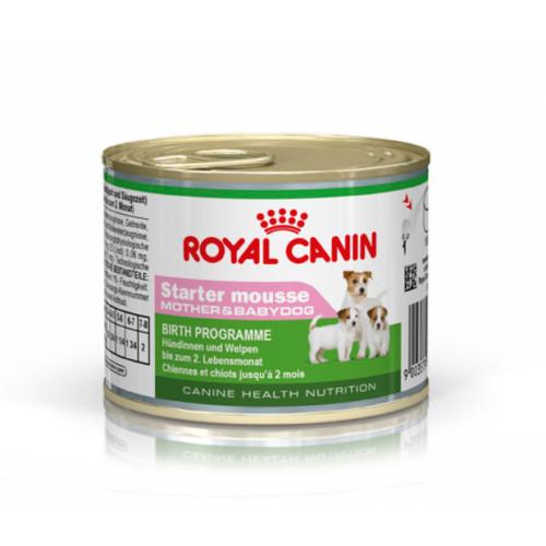 Royal Canin Starter Mother & Babydog Mousse Dog Food