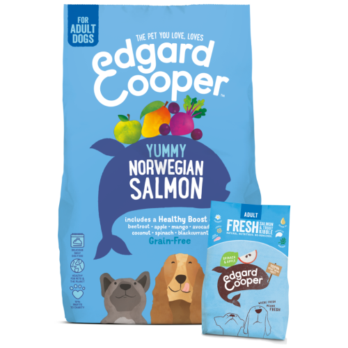 Edgard & Cooper Fresh Norwegian Salmon Grain Free Adult Dog Food 7kg