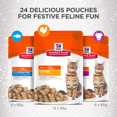 Hills Science Plan Christmas Advent Calendar for Cats