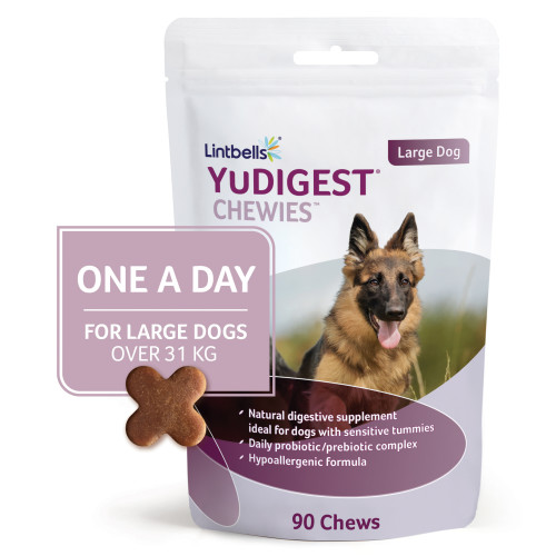 Yudigest Chewies One a Day Dog Digestion Supplement