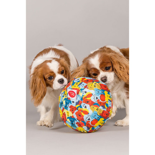 PetBloon Reusable Balloon Dog Toy