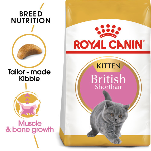 Royal Canin British Shorthair Kitten Dry Cat Food 10kg