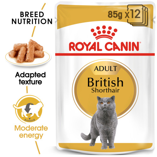 Royal Canin British Shorthair in Gravy Adult Wet Cat Food Pouches 85g x 48