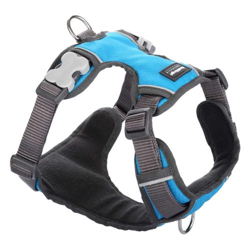 Red Dingo Padded Harness for Dogs in Turquoise X-Large