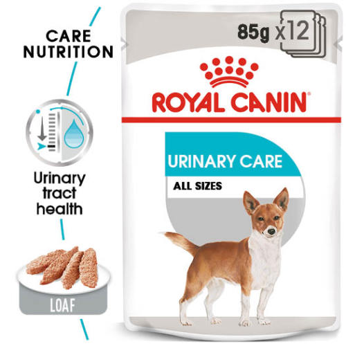Royal Canin Urinary Care Adult Wet Dog Food Pouches 85g x 60