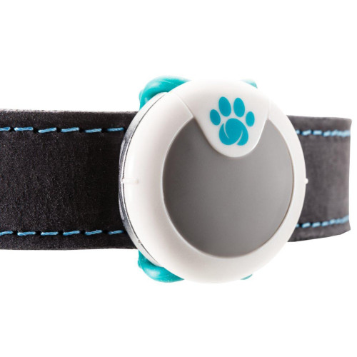 Sure Petcare Animo Activity & Behaviour Monitor for Dogs Activity & Behaviour Monitor