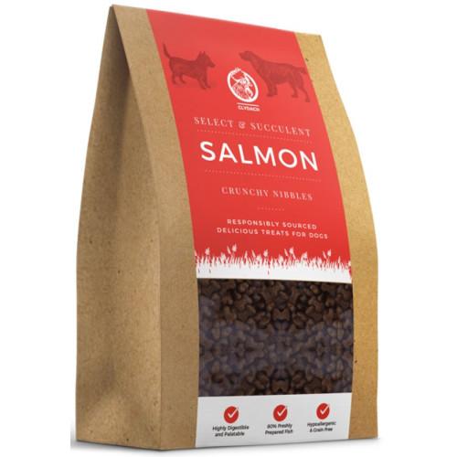 Clydach Farm Grain Free Nibbles Dog Treats 500g Succulent Salmon