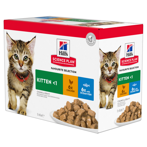 Hills Science Plan Wet Kitten Food Pouches 85g x 84 - Favourites Selection